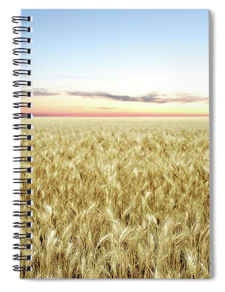 Scenics Spiral Notebook featuring the photograph Xxl Wheat Field Twilight by Sharply done