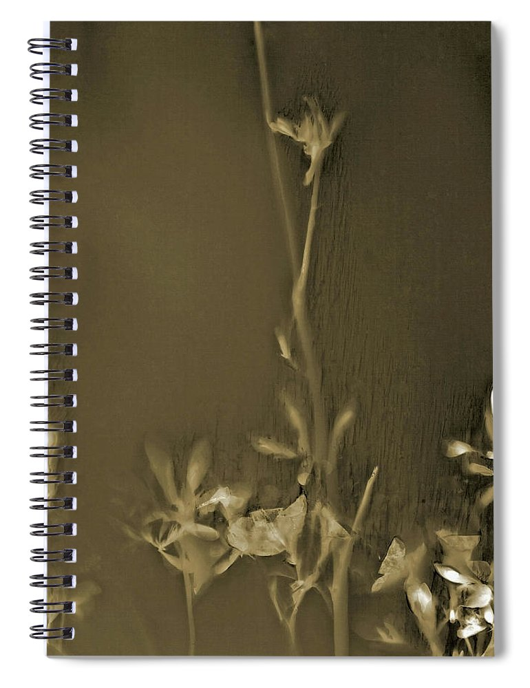 Art Spiral Notebook featuring the photograph Azalea Lumen by Holly Morris