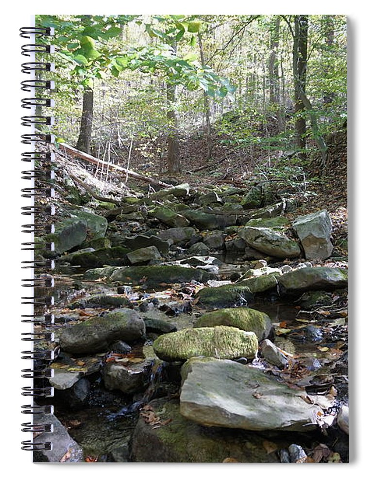 Fall Foliage Spiral Notebook featuring the photograph Bark Rocks 6 by Chris Naggy
