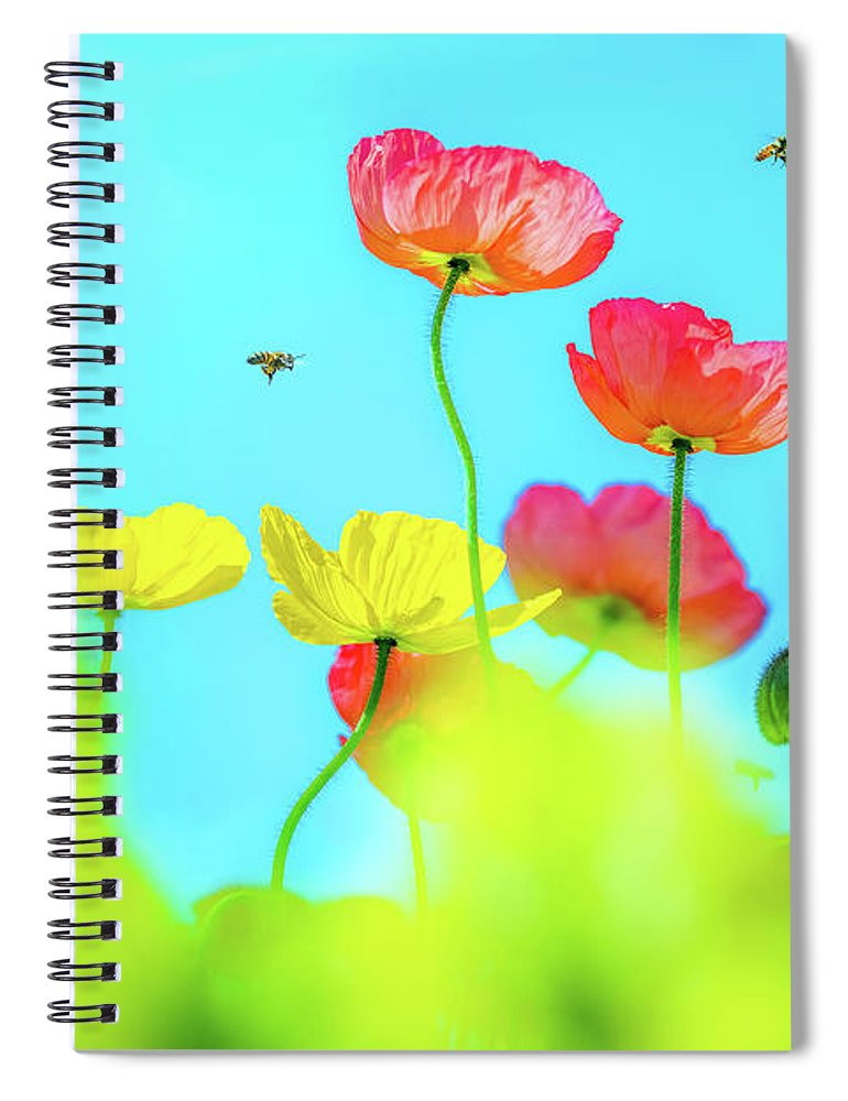 Colorful Poppy Flower Spiral Notebook featuring the photograph Bee Haven by Az Jackson