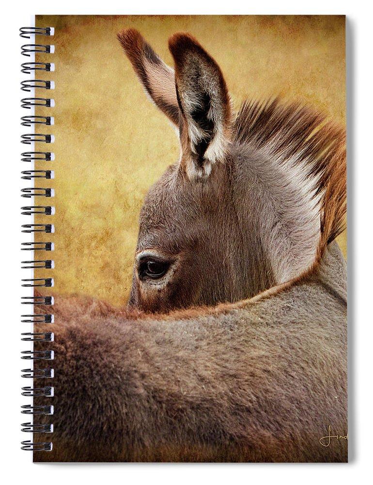 Digital Spiral Notebook featuring the digital art Chiquita by Linda Lee Hall