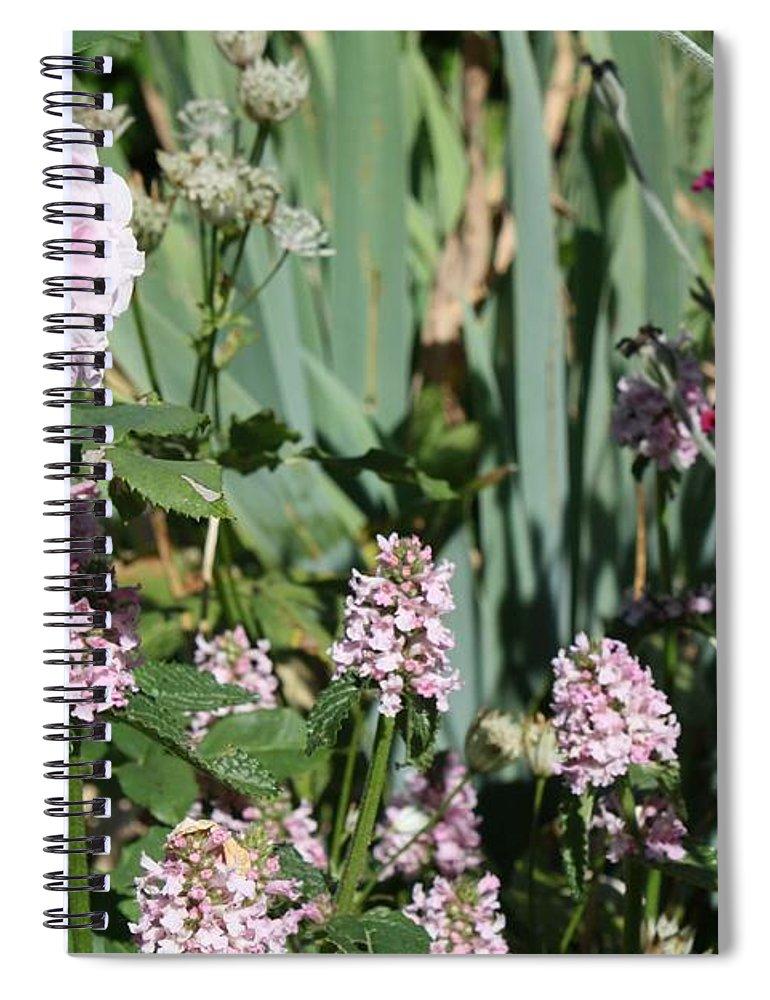Cottage Garden Spiral Notebook featuring the photograph Cottage Garden by Vicki Cridland
