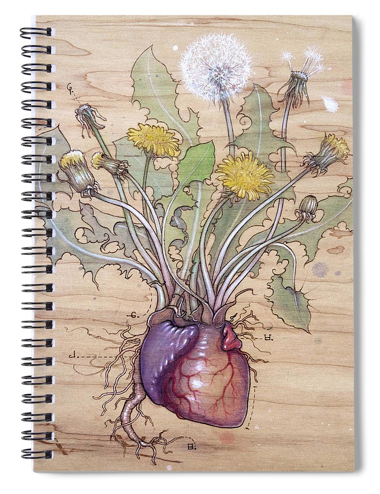 Dandelion Spiral Notebook featuring the pyrography Dandelion Heart by Fay Helfer