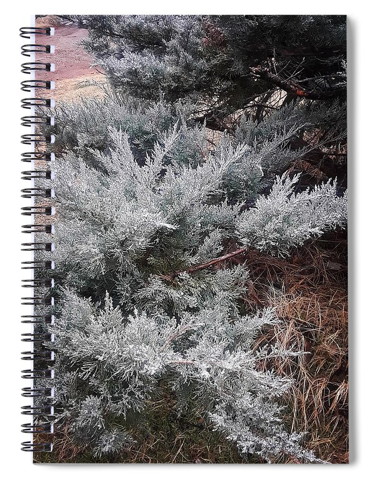 Scenery Spiral Notebook featuring the photograph First Frost by Ariana Torralba