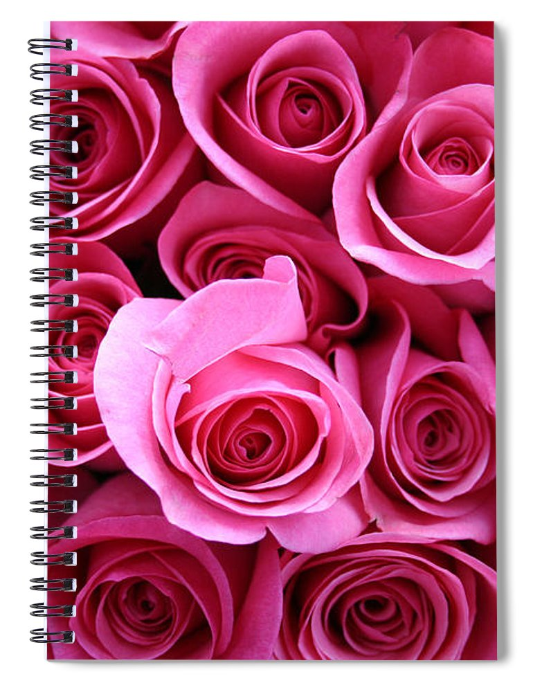 Pink Roses Spiral Notebook featuring the photograph Grandma Roses by Linda Sannuti