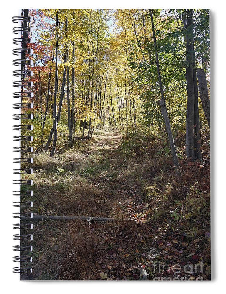 Hidden Trail Spiral Notebook featuring the photograph Hidden Trail by Chris Naggy