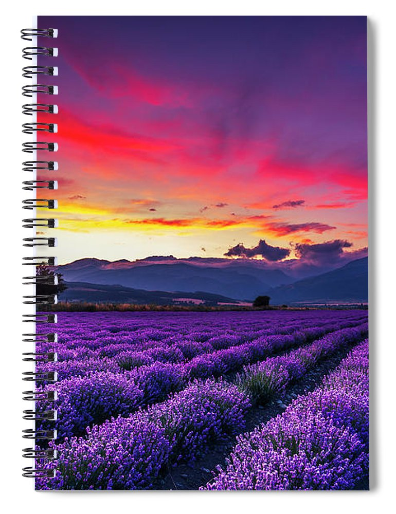 Dusk Spiral Notebook featuring the photograph Lavender Season by Evgeni Dinev