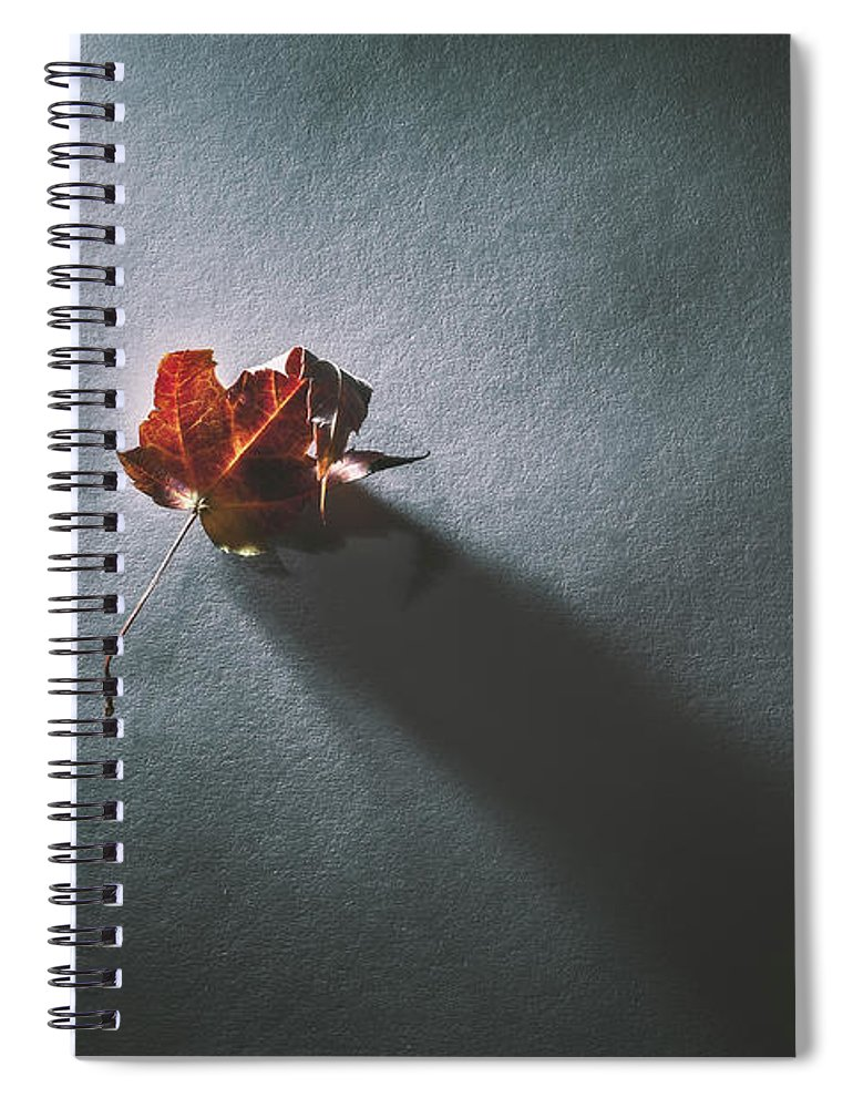 Leaf Spiral Notebook featuring the photograph Leaf and Shadow by Scott Norris