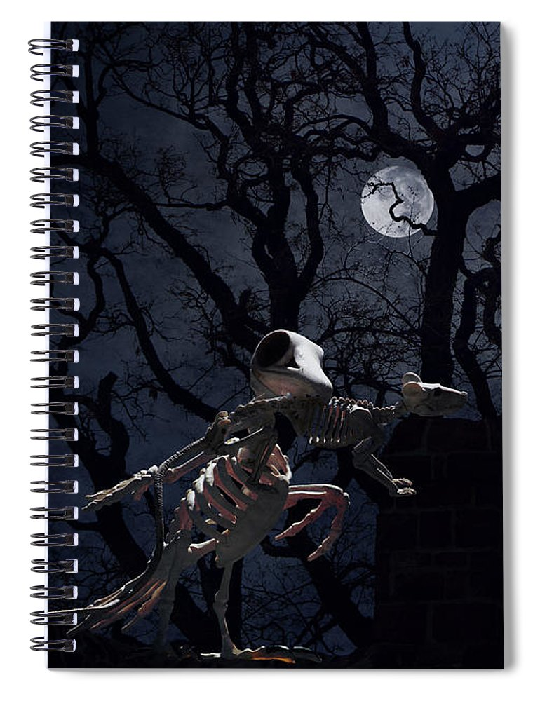 Raven Spiral Notebook featuring the photograph Raven and Rat Skeleton in Moonlight - Halloween by Colleen Cornelius