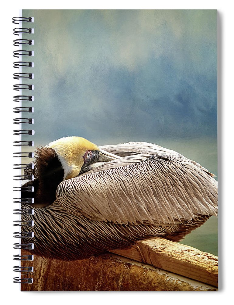 Pelican Spiral Notebook featuring the digital art Resting Pelican by Linda Lee Hall