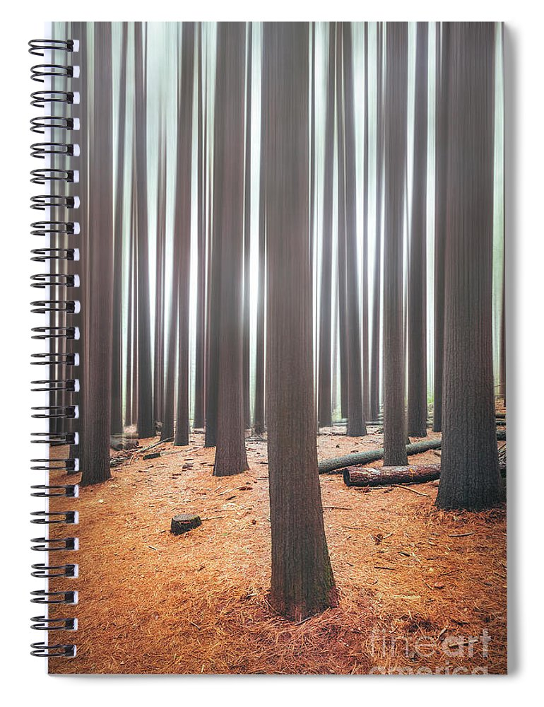Kremsdorf Spiral Notebook featuring the photograph Rhythm Of The Trees by Evelina Kremsdorf