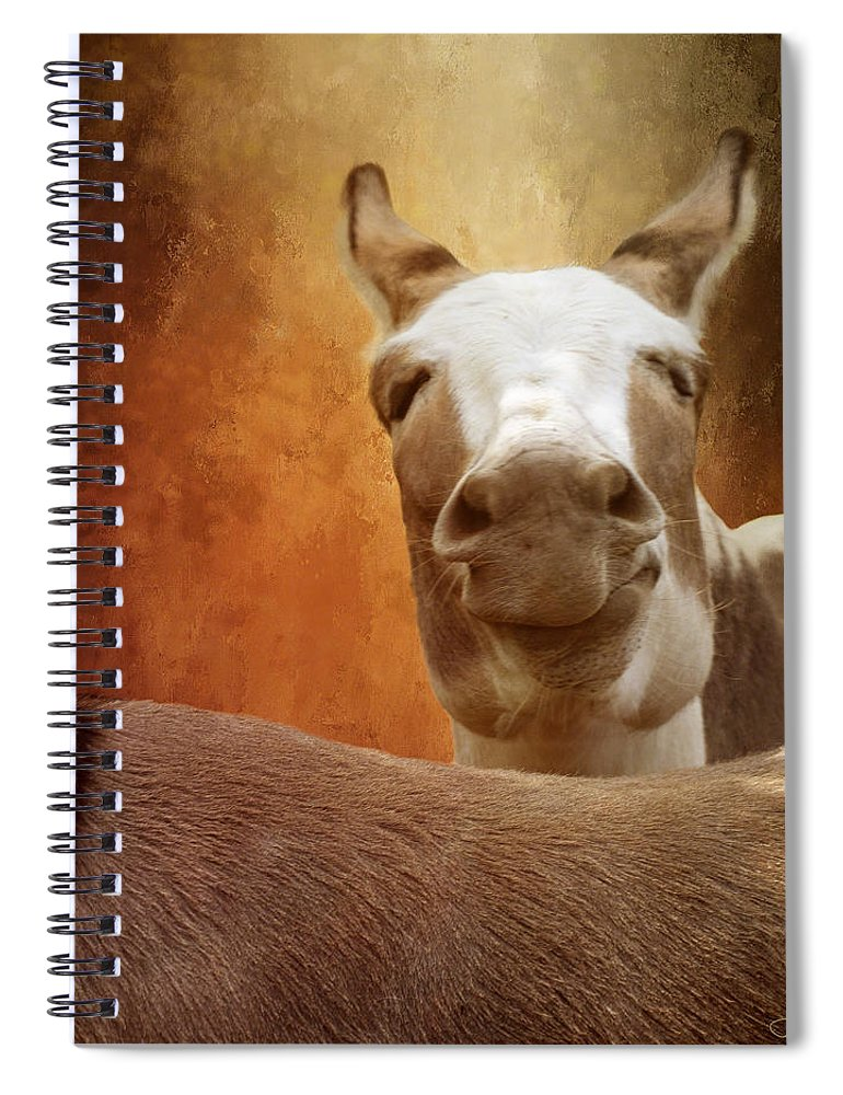 Donkey Spiral Notebook featuring the digital art Smirk by Linda Lee Hall