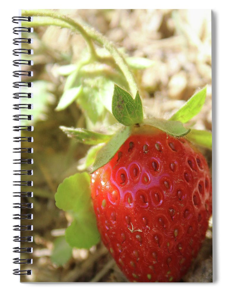 Strawberry Spiral Notebook featuring the photograph Strawberry by Holly Morris