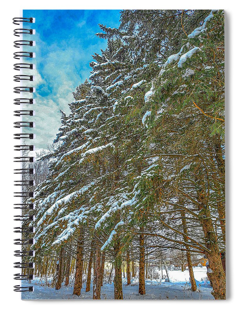 Nature Spiral Notebook featuring the photograph Winter trees by M Forsell