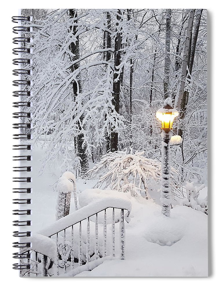 Winter Spiral Notebook featuring the photograph Winter by Trevor Slauenwhite