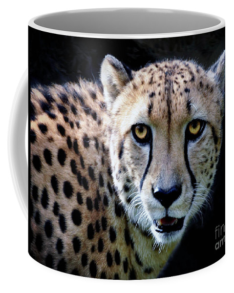 African Cheetah Coffee Mug featuring the photograph Cheetah by Savannah Gibbs