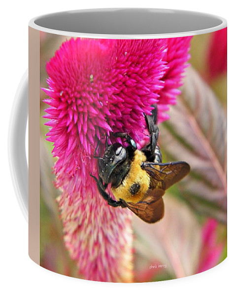 Bee Coffee Mug featuring the photograph Cockscomb And Bumble Bee by Chris Berry