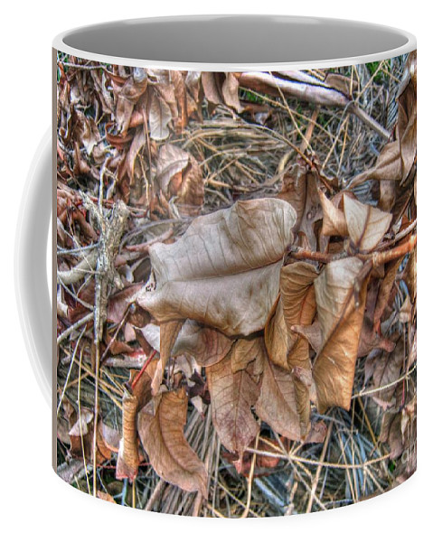Michelle Meenawong Coffee Mug featuring the photograph Dead Leaves by Michelle Meenawong