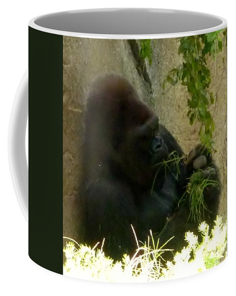 Gorilla Snacking Coffee Mug featuring the photograph Gorilla Snacking by Susan Garren
