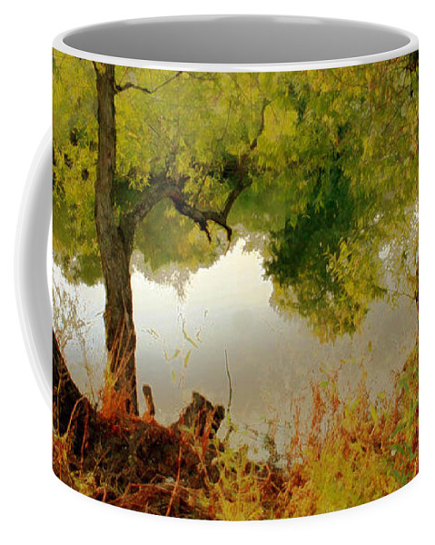 Nature Coffee Mug featuring the photograph Old Country by Linda Sannuti