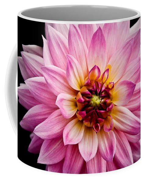Flowers Coffee Mug featuring the photograph Pink Dahlia by Steve McKinzie