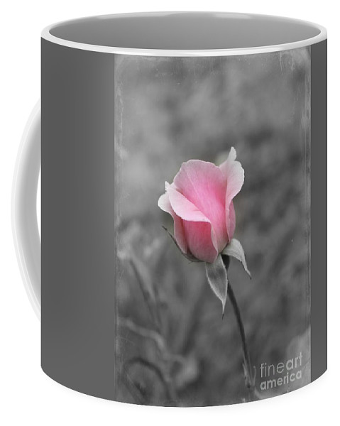 Pink Rose Coffee Mug featuring the photograph A Hint Of Pink by Clare Bevan