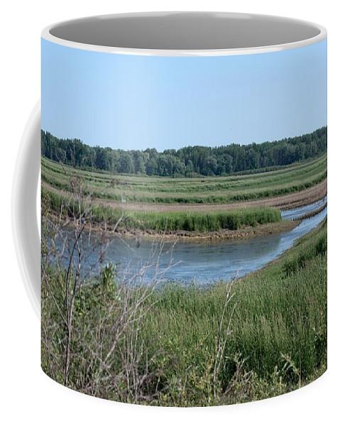 Shiawassee Wildlife Nature Park Coffee Mug featuring the photograph Across The Water by Linda Kerkau