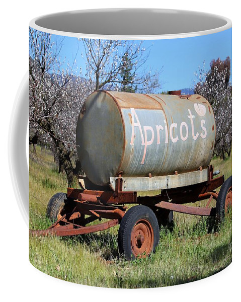 Apricot Coffee Mug featuring the photograph Apricots by Henrik Lehnerer