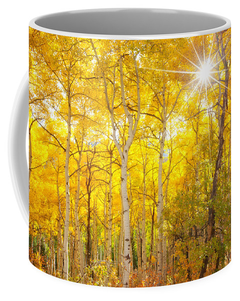 Aspens Coffee Mug featuring the photograph Aspen Morning by Darren White