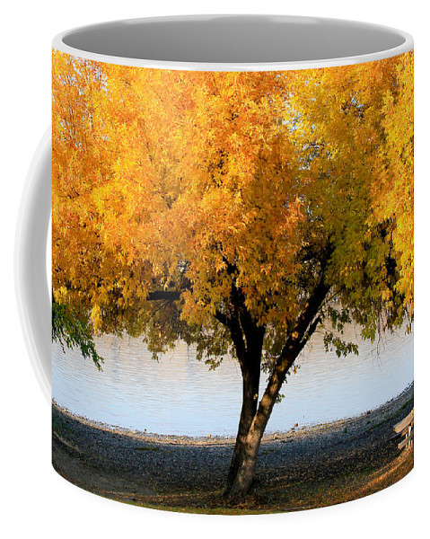 Trees Coffee Mug featuring the photograph Autumn At The River by Athena Mckinzie