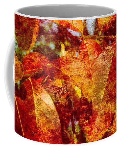 Autumn Leaves Coffee Mug featuring the photograph Autumn Bright by Arlene Carmel
