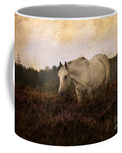 Pony Coffee Mug featuring the photograph Bed Of Heather by Angel Ciesniarska