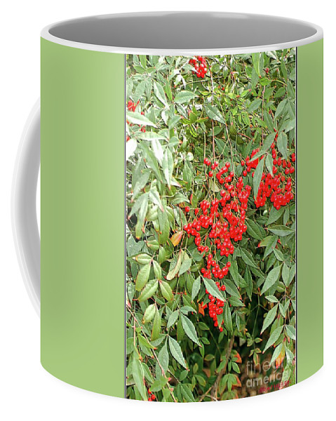 Red Coffee Mug featuring the photograph Berry Bush by Kathleen Struckle