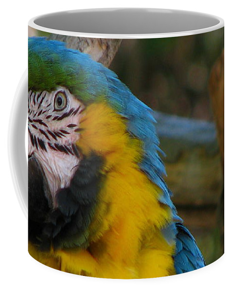 Patzer Coffee Mug featuring the photograph Blue And Gold by Greg Patzer