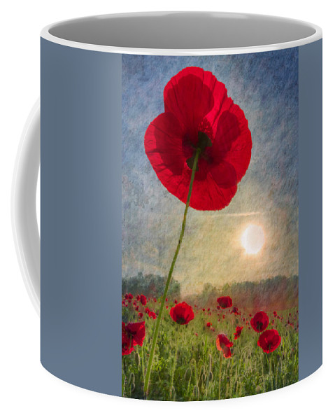 American Coffee Mug featuring the photograph Celebrate The Day by Debra and Dave Vanderlaan