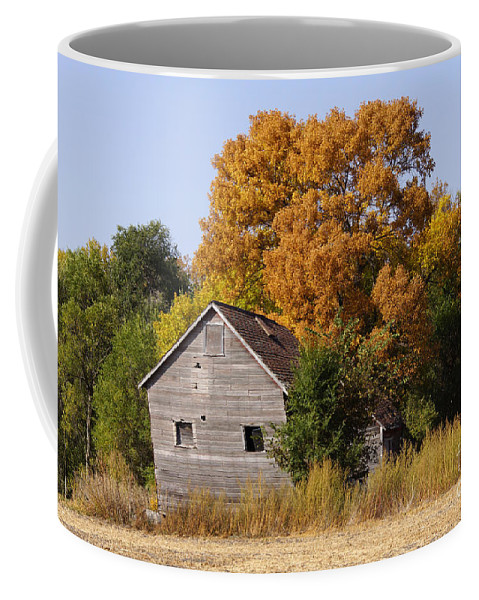 Barn Coffee Mug featuring the photograph Changing Colors by Lori Tordsen