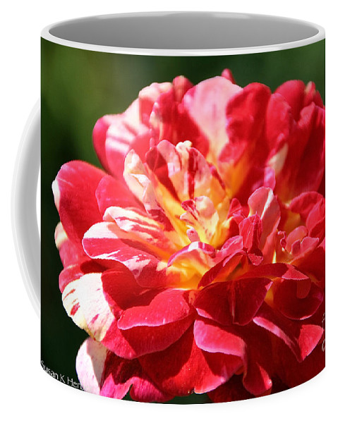 Flower Coffee Mug featuring the photograph Cherry Petals by Susan Herber