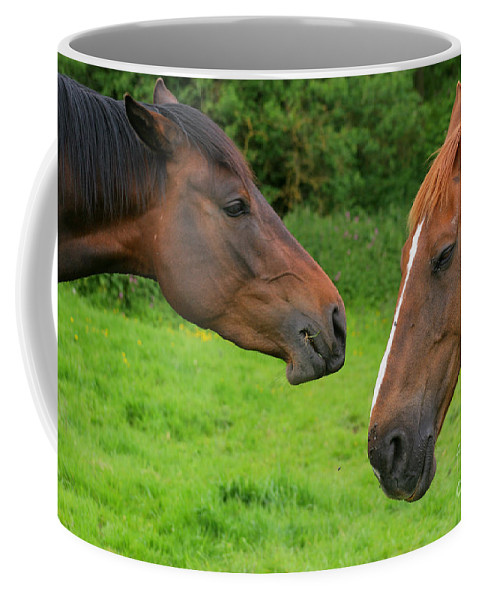 Horse Coffee Mug featuring the photograph Conversations by Angel Tarantella