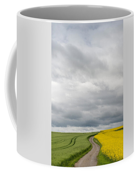 Photography Coffee Mug featuring the photograph Dirt Road Passing Through Grain by Panoramic Images
