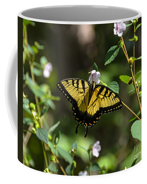 Butterfly Coffee Mug featuring the photograph Eastern Tiger Swallowtail by Carol Bradley