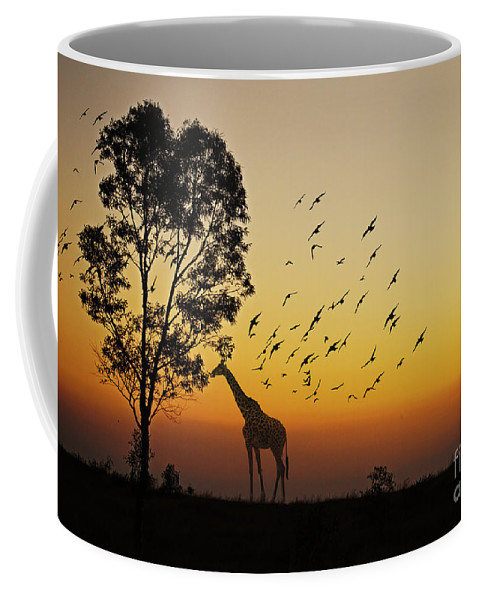 Nature Coffee Mug featuring the photograph Evening Meal by Ben Yassa