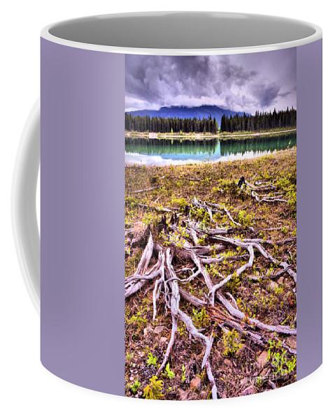 Lake Coffee Mug featuring the photograph Exposed by Tara Turner