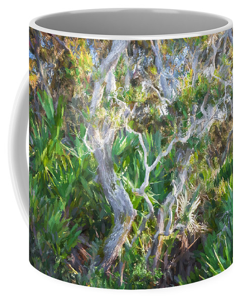 Washington Oaks Gardens State Park Coffee Mug featuring the photograph Florida Scrub Oaks Painted by Rich Franco