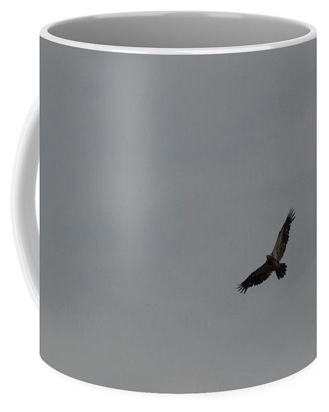 Bird Coffee Mug featuring the photograph Flying High by Linda Kerkau