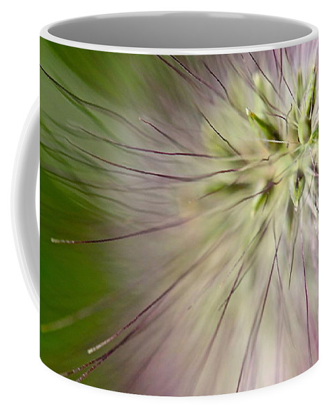 Foxtail Coffee Mug featuring the photograph Foxtail by Tracy Male
