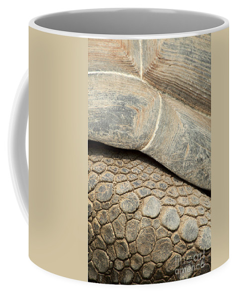 Closeup Coffee Mug featuring the photograph Galapagos Turtle by Anthony Totah