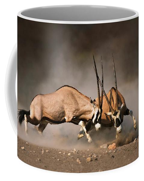 Gemsbok Coffee Mug featuring the photograph Gemsbok Fight by Johan Swanepoel