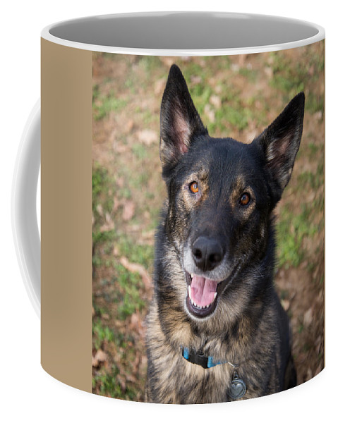 German Shepherd Coffee Mug featuring the photograph German Shepherd by Stacy Abbott