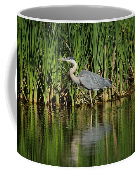 Animals Coffee Mug featuring the photograph Great Blue Heron by Ernie Echols