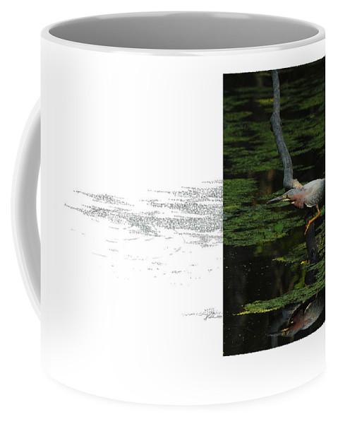 Green Heron Coffee Mug featuring the photograph Green Heron by Andrew McInnes